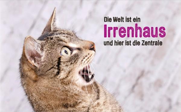 Henkelbecher Keramik Kaffeetasse erschrockene Katze 'Irrenhaus!