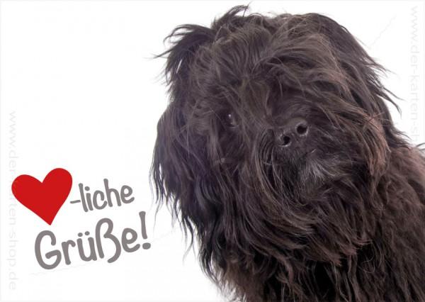 Postkarte Grußkarte witziger, schwarzer Hund 'Herzliche Grüße!'
