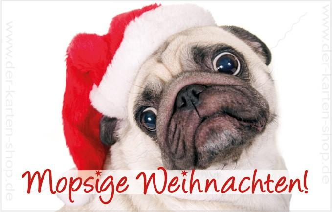 Mops Bilder Weihnachten.Minikarte Weihnachtskarte Süßer Mops Mopsige Weihnachten
