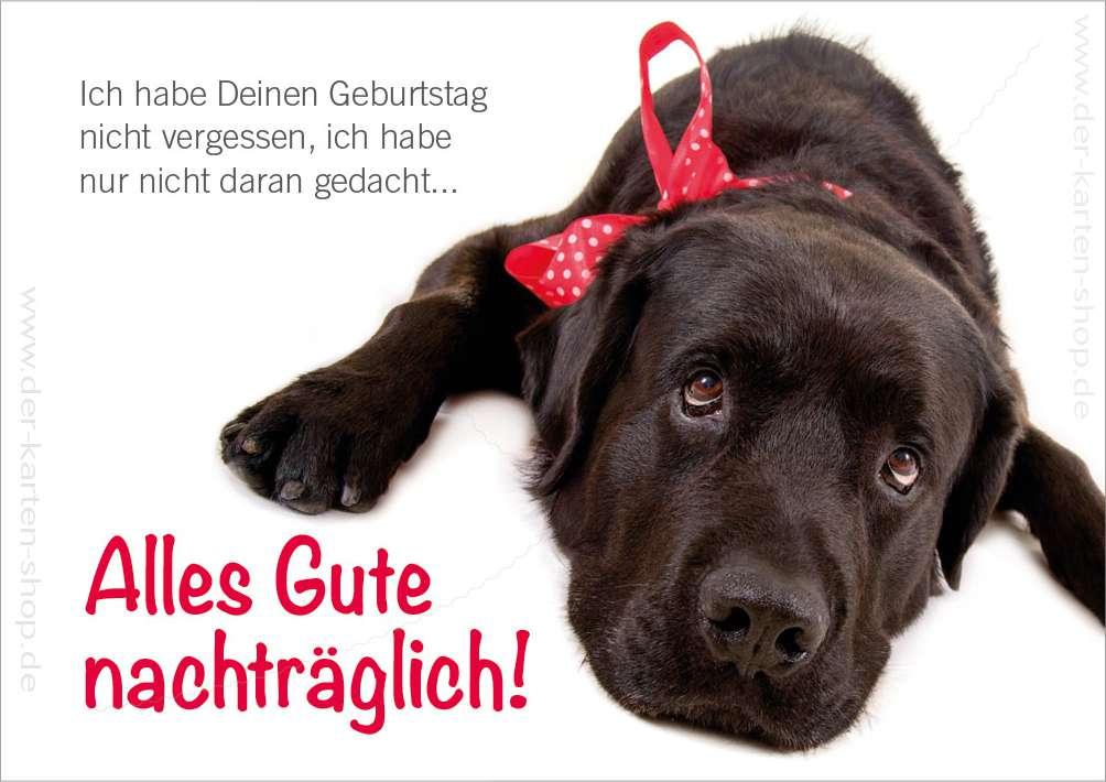 Doppelkarte Geburtstagskarte Geburtstag Vergessen Susser Hund Alles