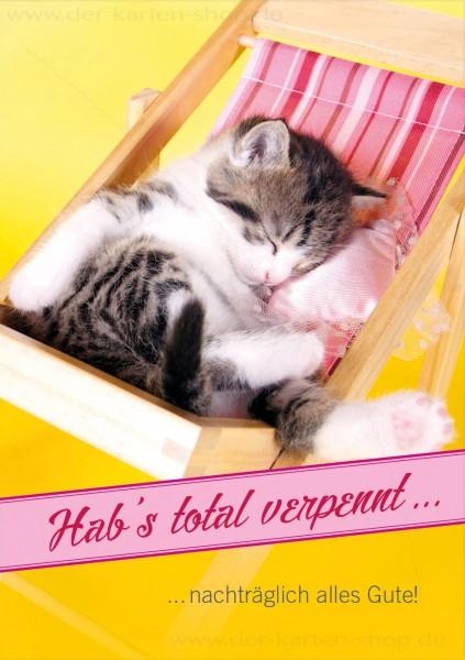 Doppelkarte Geburtstag vergessen schlafende Katze 'Hab's total verpennt. Nachträglich alles Gute!'
