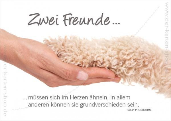 Postkarte Grußkarte Hand hält Hundepfote 'Zwei Freunde...'