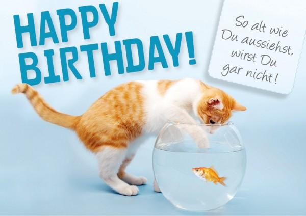 """Doppelkarte Geburtstagskarte Katze angelt nach Goldfisch """"Happy Birthday"""""""