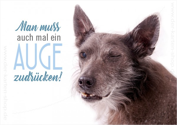 Postkarte Grußkarte Hund, mexikanischer Nackthund 'Man muss auch mal ein Auge zudrücken'