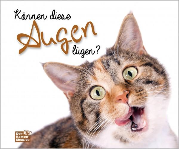 Brillenputztuch witzige Katze 'Können diese Augen lügen?'