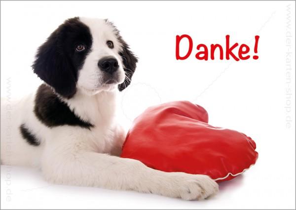 Postkarte Dankeskarte Landseer Hund mit Herz 'Danke'