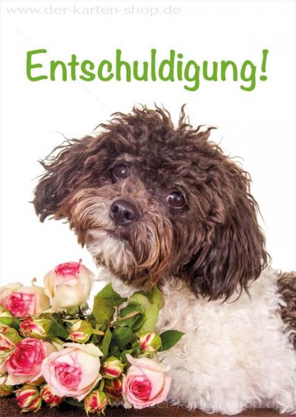 Postkarte Grußkarte Entschuldigungskarte Hund mit Rosen 'Entschuldigung'