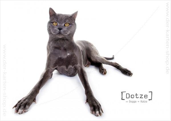 Postkarte Grußkarte Tierischer Mutant Dogge – Katze 'Dotze'
