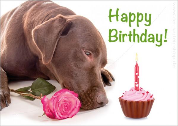 Doppelkarte Geburtstagskarte Labrador 'Happy Birthday'
