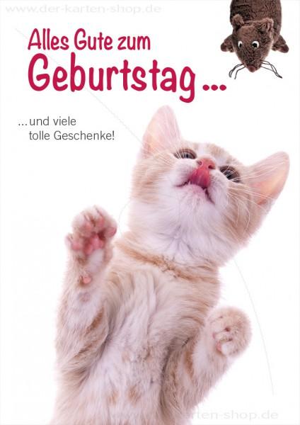 Doppelkarte Geburtstagskarte Gluckwunschkarte Katze Alles Gute Zum