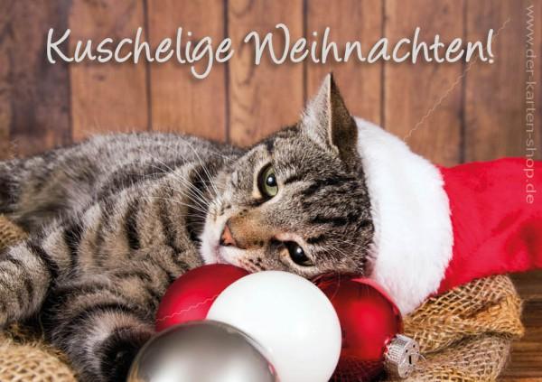 Doppelkarte Weihnachtskarte süße Katze 'Kuschelige Weihnachten'