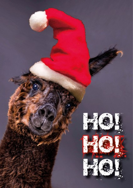 Doppelkarte Weihnachtskarte Alpaka 'Ho ho ho'