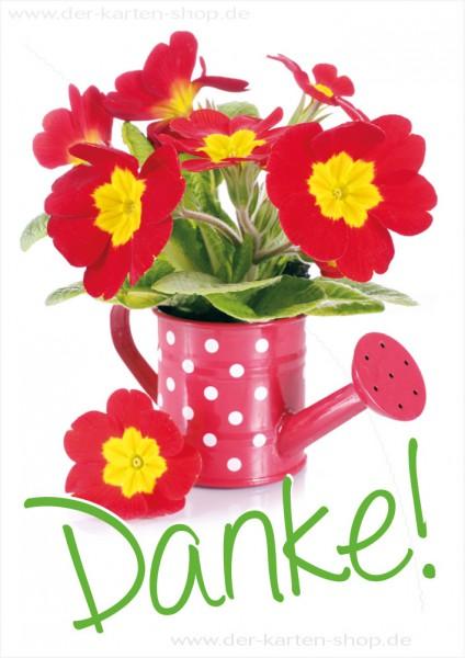 Doppelkarte Grußkarte Dankeskarte mit Primeln in Gießkanne 'Danke'