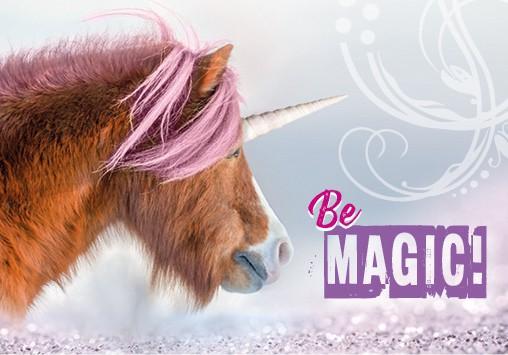 Magnet Kühlschrankmagnet Pony als Einhorn 'Be magic'