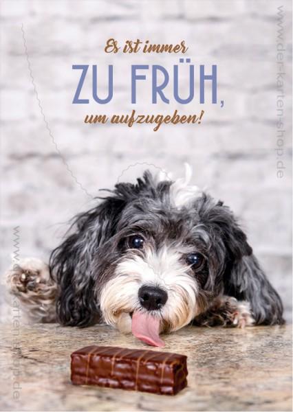 Postkarte Grußkarte Spruchkarte kleiner Hund 'Es ist immer zu früh, um aufzugeben!'