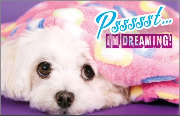 Henkelbecher Keramik Kaffeetasse Malteser Hund 'Pssst... I'm dreaming'