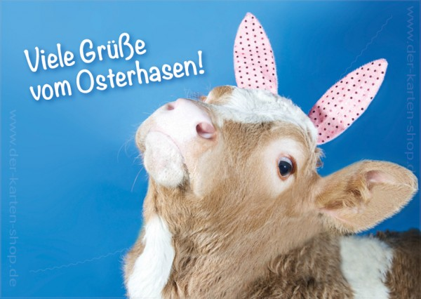 Postkarte Grußkarte Osterkarte kleines Kalb 'Viele Grüße vom Osterhasen'