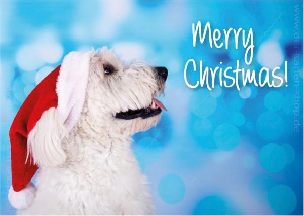 Postkarte Weihnachtskarte weißer Hund mit Nikolausmütze 'Merry Christmas'