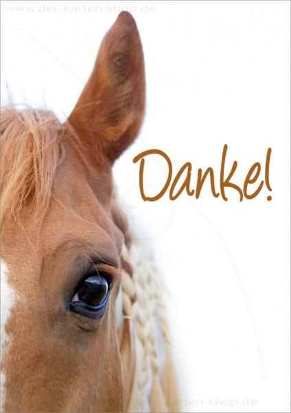 Doppelkarte Grußkarte Dankeskarte hübsches Pferd mit treuem Blick 'Danke'