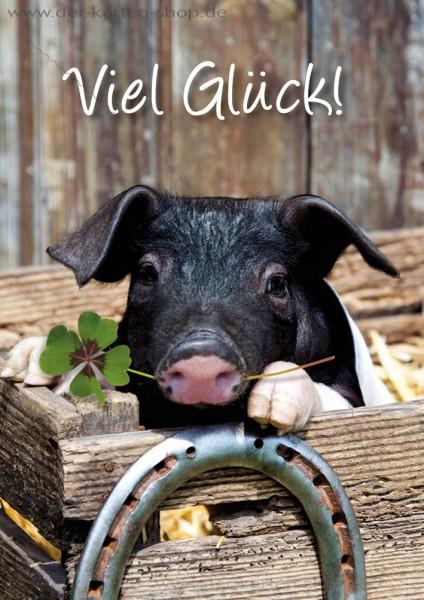 Doppelkarte Grußkarte kleines Ferkel, Schwein mit Glücksklee und Hufeisen 'Viel Glück!'