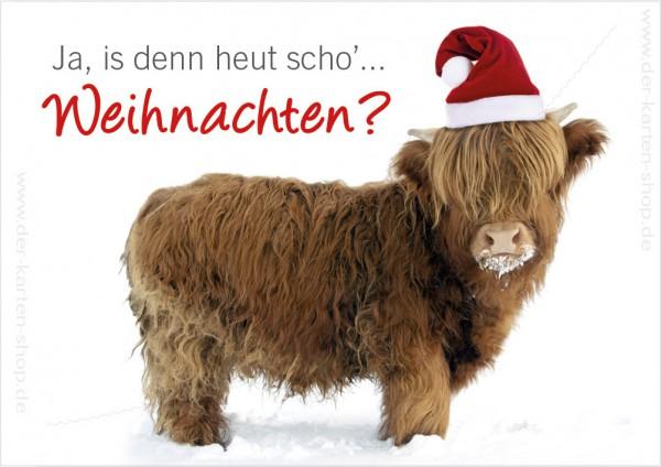 Doppelkarte Weihnachtskarte witziges Hochland Rind 'Ja, is denn heut scho Weihnachten?'