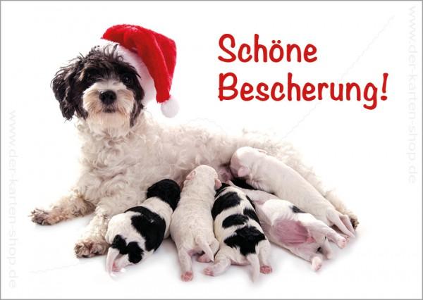 Postkarte Weihnachtskarte Hund mit Welpen 'Schöne Bescherung'