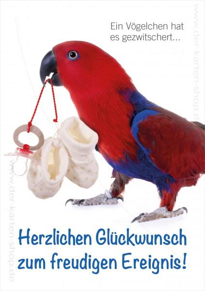 Doppelkarte Glückwunschkarte zur Geburt Papagei mit Schnuller 'Ein Vögelchen hat es gezwitschert'