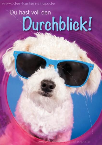 Doppelkarte Grußkarte süßer Hund mit Sonnenbrille 'Du hast voll den Durchblick!'