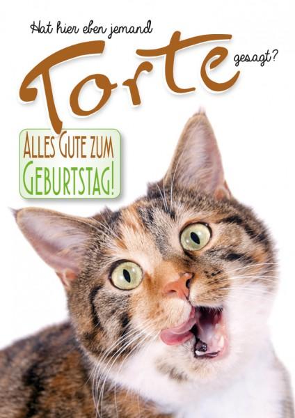 Doppelkarte Geburtstagskarte Glückwunschkarte Katze 'Hat hier eben jemand Torte gesagt?'