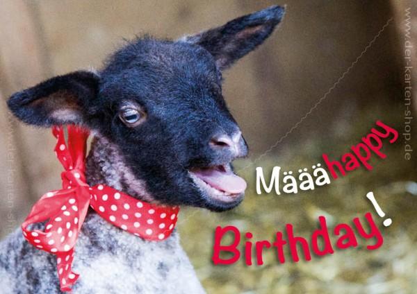 Doppelkarte Geburtstagskarte süßes Schaf, Lamm 'Määähappy Birthday'