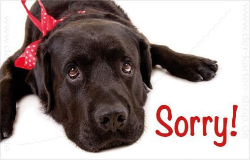 Minikarte Glückwunschkarte Entschuldigungskarte süßer Labrador Hund 'Sorry'