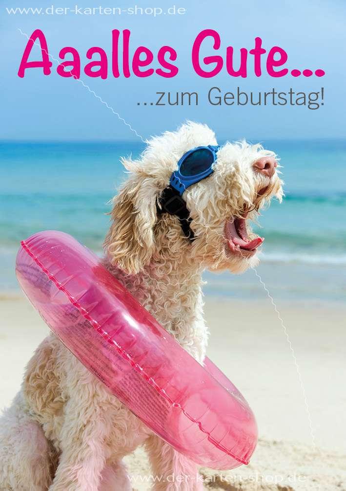 Doppelkarte Geburtstagskarte Gluckwunschkarte Hund Mit Schwimmreifen