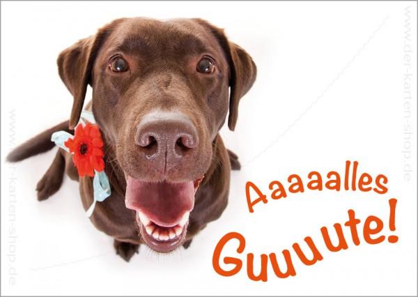 Postkarte Geburtstagskarte Labrador Hund Alles Gute