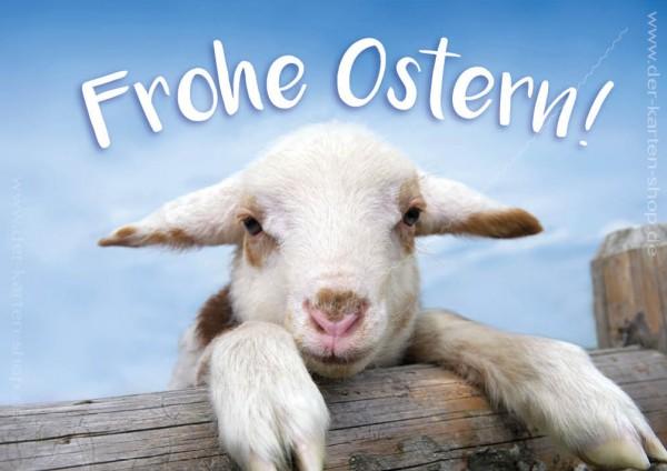 Doppelkarte Osterkarte Grußkarte mit Lamm, Schaf 'Frohe Ostern!'