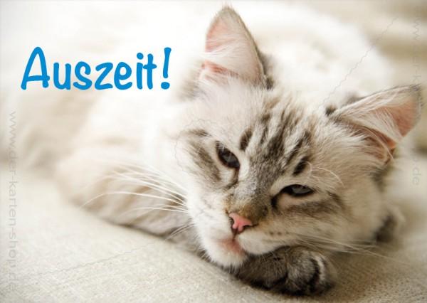 Postkarte Grußkarte entspannte Katze 'Auszeit'