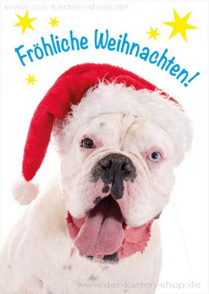 Postkarte Weihnachtskarte weißer Hund Boxer 'Fröhliche Weihnachten'
