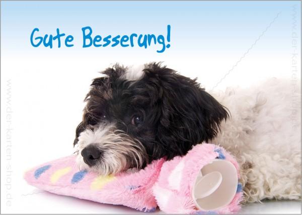 Postkarte Grußkarte süßer, kranker Hund mit Wärmeflasche 'Gute Besserung'