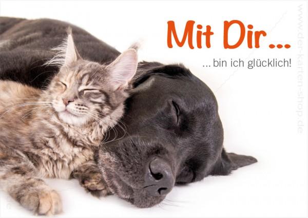 Postkarte Grußkarte Freundschaft Hund und Katze 'Mit Dir bin ich glücklich'