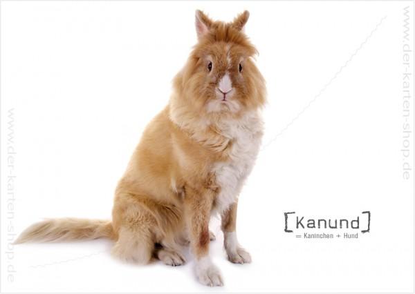 Postkarte Grußkarte Tierischer Mutant Kaninchen – Hund 'Kanund'