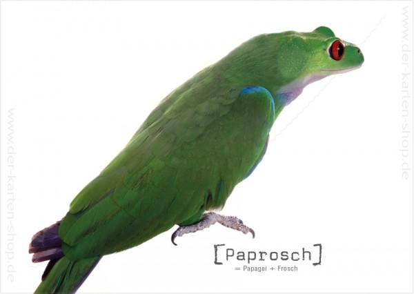 Postkarte Grußkarte Tierischer Mutant Papagei – Frosch 'Paprosch'