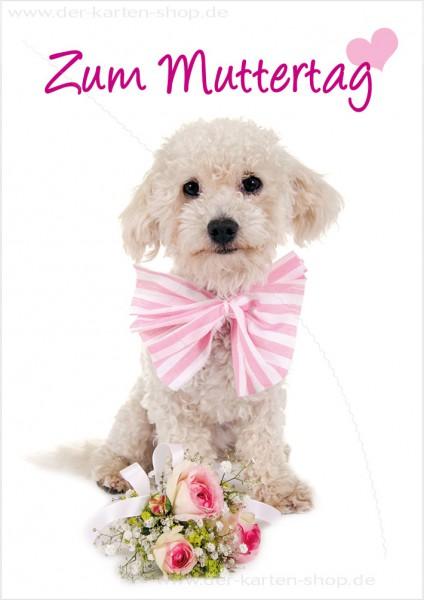Doppelkarte Glückwunschkarte Muttertagskarte Hund mit Blumen 'Zum Muttertag'