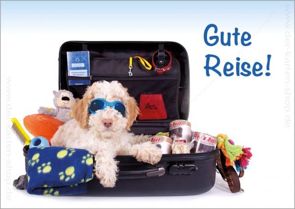 Postkarte Grußkarte kleiner Hund im Reisekoffer 'Gute Reise!'