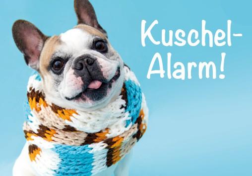 Magnet Kühlschrankmagnet süsse Bulldogge mit Schal 'Kuschelalarm'