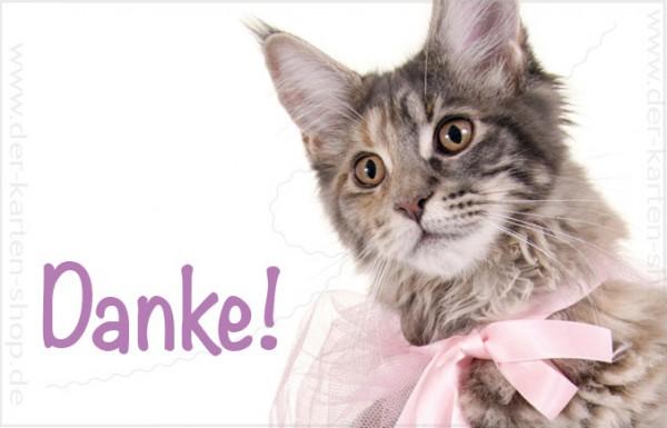 Minikarte Glückwunschkarte Dankeskarte süße Katze mit Schleife 'Danke'