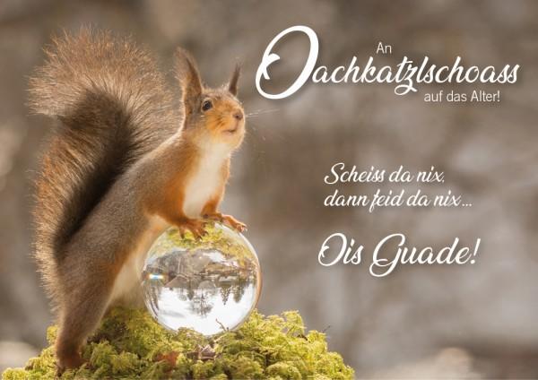 """Doppelkarte Geburtstagskarte Eichhörnchen """"Oachkatzlschoass"""""""