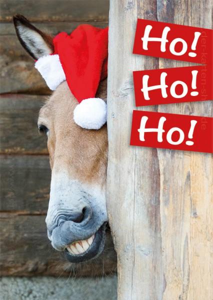 Postkarte Weihnachtskarte witziger Esel, Pferd 'Ho Ho Ho'