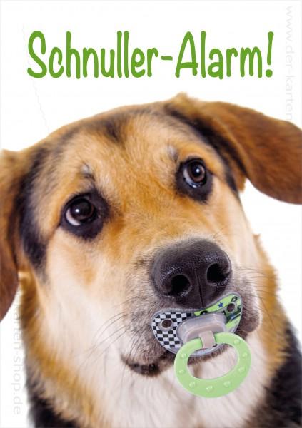 Doppelkarte Glückwunschkarte zur Geburt Hund mit Schnulli 'Schnuller-Alarm'