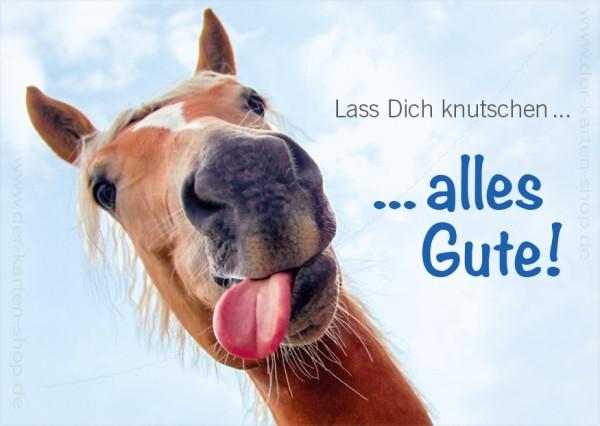 Postkarte Geburtstagskarte witziges Pferd mit Zunge 'Lass Dich knutschen... alles Gute!'