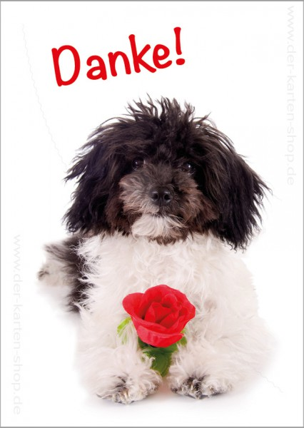 Postkarte Grußkarte Dankeskarte süßer Hund mit Rose 'Danke'