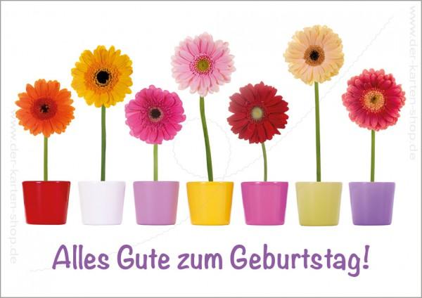 Doppelkarte Geburtstagskarte bunte Blumentöpfe mit Gerbera \'Alles ...